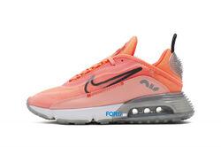 Кроссовки Nike Air Max 2090 W